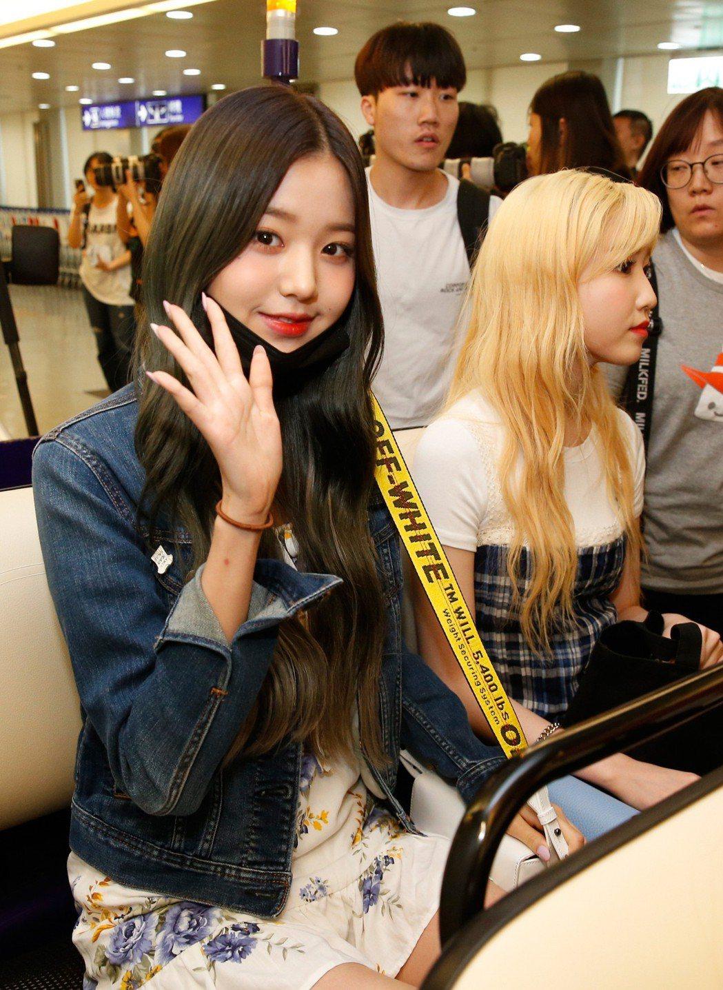 韓國限定女團「IZ*ONE」傍晚抵台,她們親切地跟粉絲揮手致意。記者鄭超文/攝影