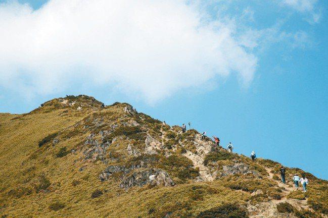 合歡北峰非假日仍有不少登山客。 陳立凱、王騰毅/攝影