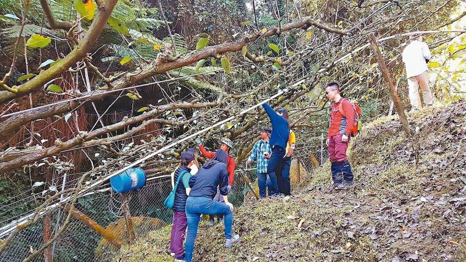 苗栗縣農業處推電圍網協助農民防治猴害,因見成效,每年申請農戶數穩定,去年底並有日本專家來參訪。 圖/聯合報系資料照片