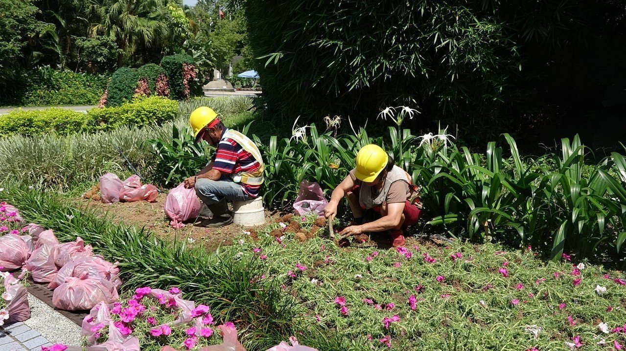 台北動物園今開園 鳥園重新開放