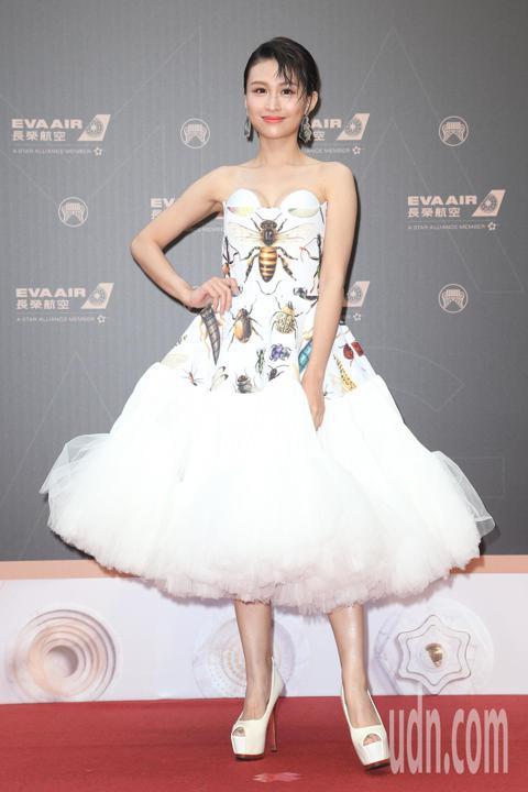 第30屆金曲獎,歌手黃明志入圍最佳音樂錄影帶獎,黃若熙代表出席典禮。