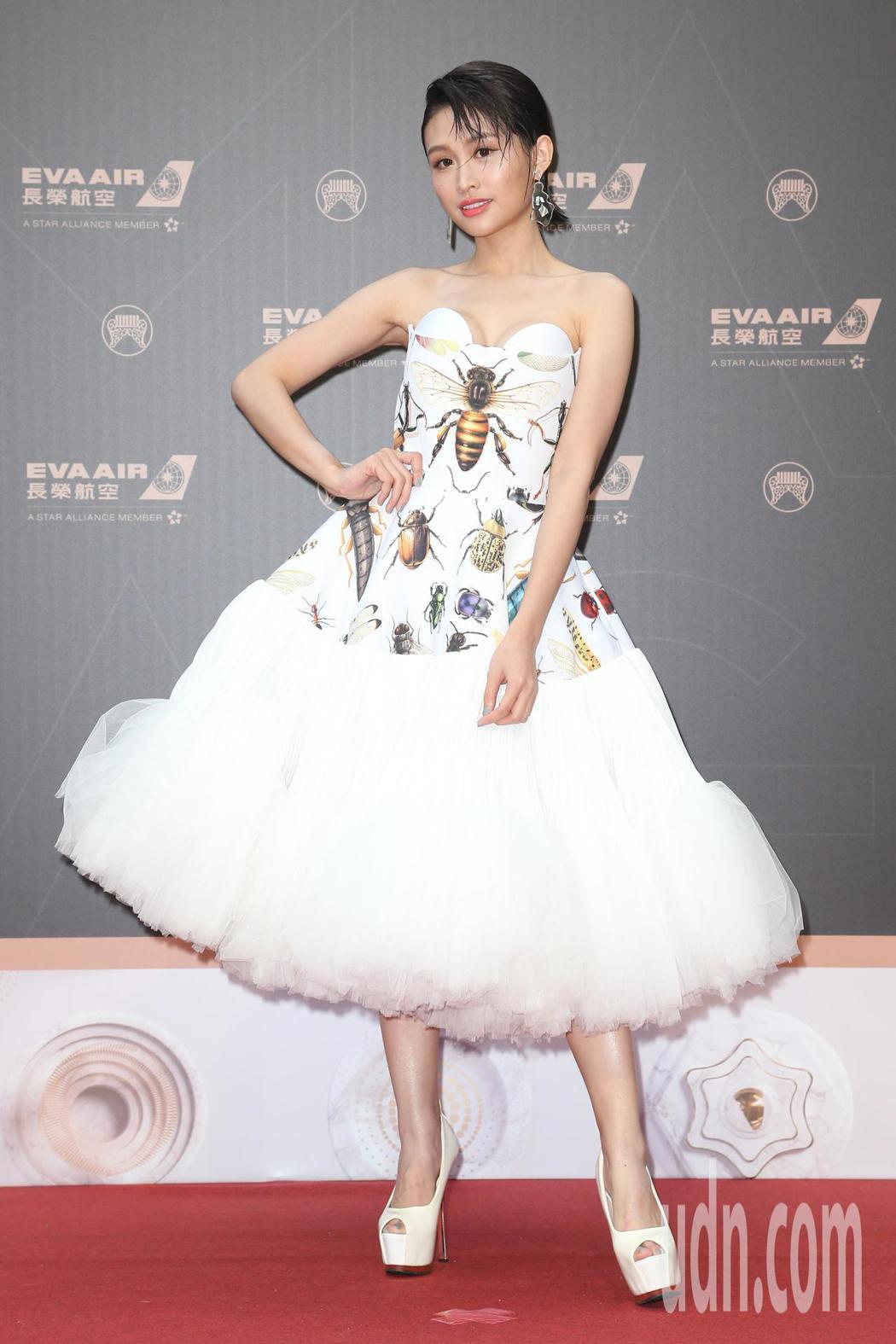 第30屆金曲獎,歌手黃明志入圍最佳音樂錄影帶獎,黃若熙代表出席典禮。記者陳立凱/...