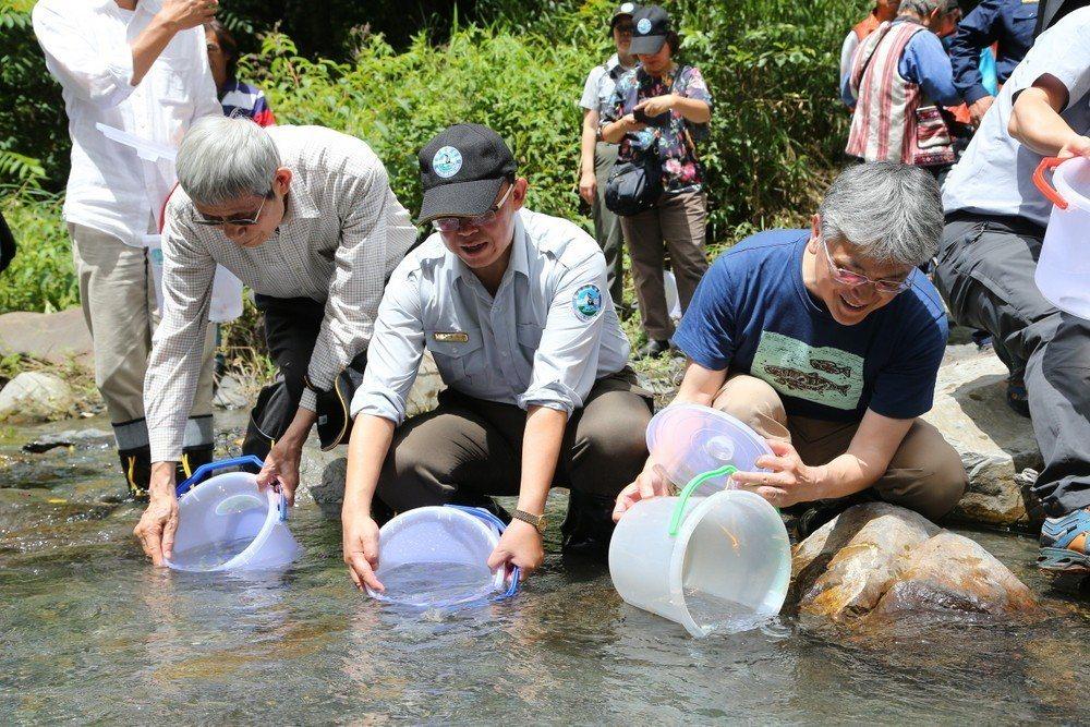 雪霸國家公園管理處6月28日在武陵進行櫻花鉤吻鮭放流,左起為林曜松教授、雪霸管理...