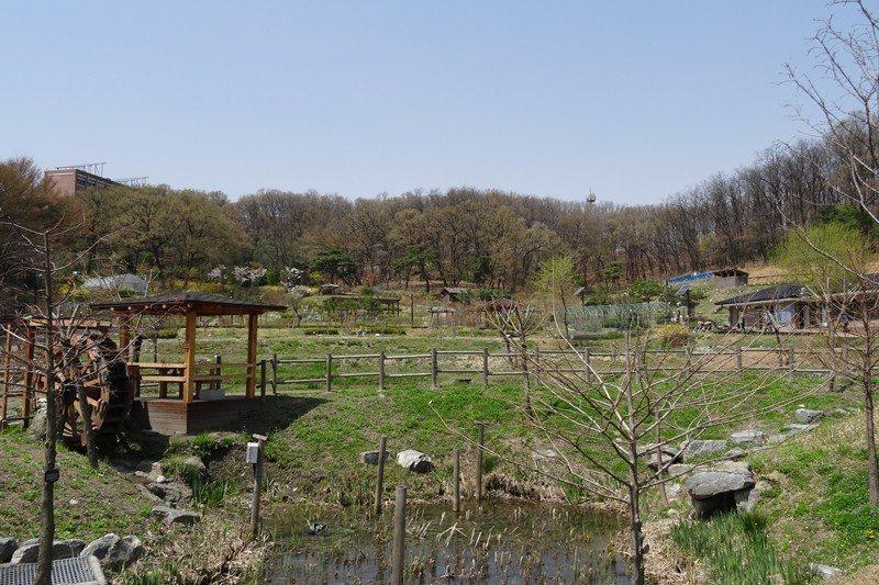社區農園一角,因是靠山的社區,自然條件非常好。 圖/作者自攝
