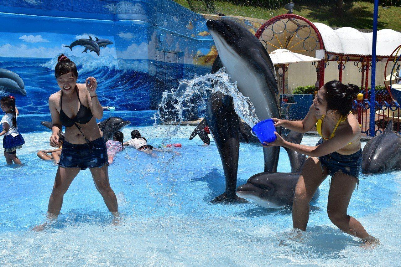 影╱遠雄海洋公園邀遊客打水仗 比基尼入園半價優惠