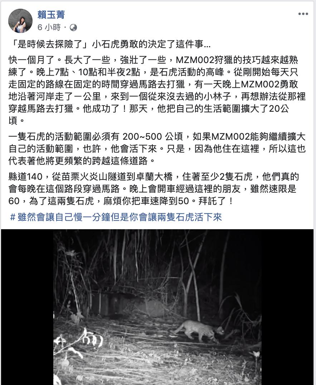 華梵大學景觀與環境設計學系副教授賴玉菁今年6月3日追蹤到一隻還不到1歲、過瘦有壁...