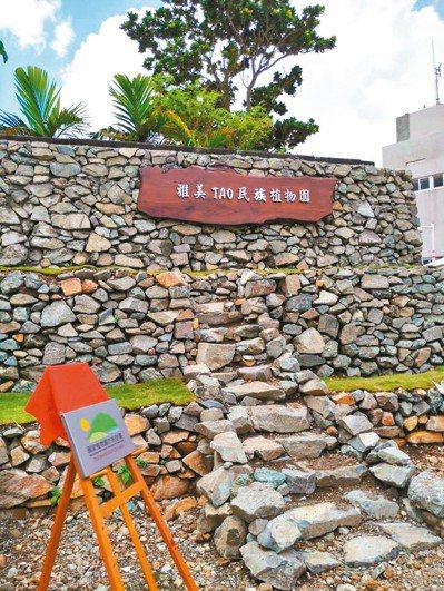 台東蘭嶼高中構築「雅美TAO民族植物園」,讓學生認識傳統食材和民族植物,培育稀有...