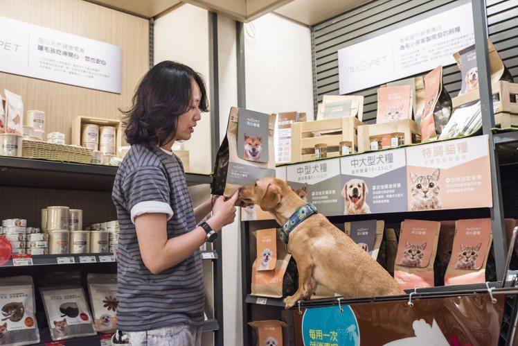 HOLA特力和樂為寵物友善商場,在賣場裡經常可見飼主和毛小孩一同逛街的溫馨畫面。...
