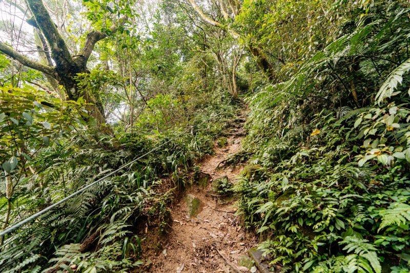 熱門郊山!桃園「石門山步道」難度不高、容易親近的台灣小百岳