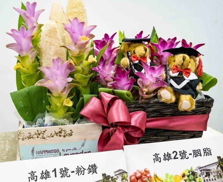 農委會高雄農業改良場於4日發布有「熱帶鬱金香」之稱的薑荷花新品種「高雄1號—粉鑽...