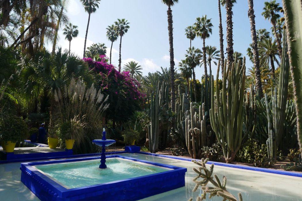 摩洛哥馬若雷勒花園/法國服裝設計師聖羅蘭的後花園