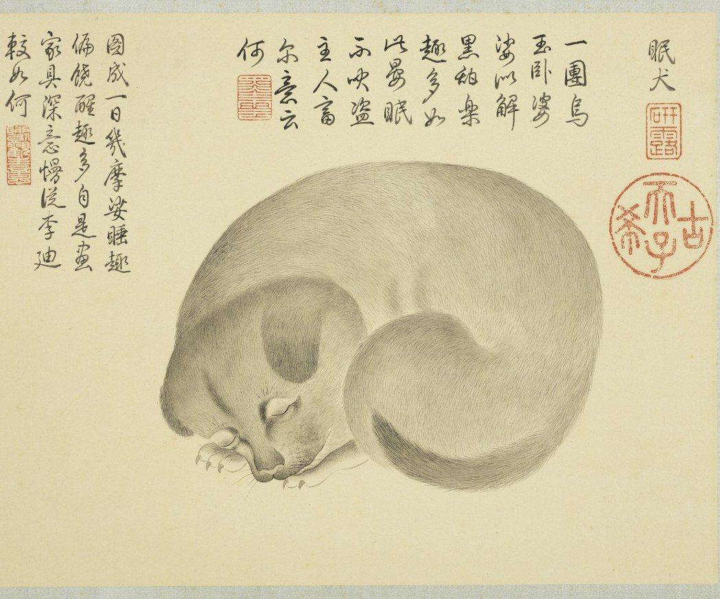 金廷標所畫的「眠犬」,畫小狗蜷成一圈熟睡的模樣,深受乾隆喜愛。 圖/故宮提供