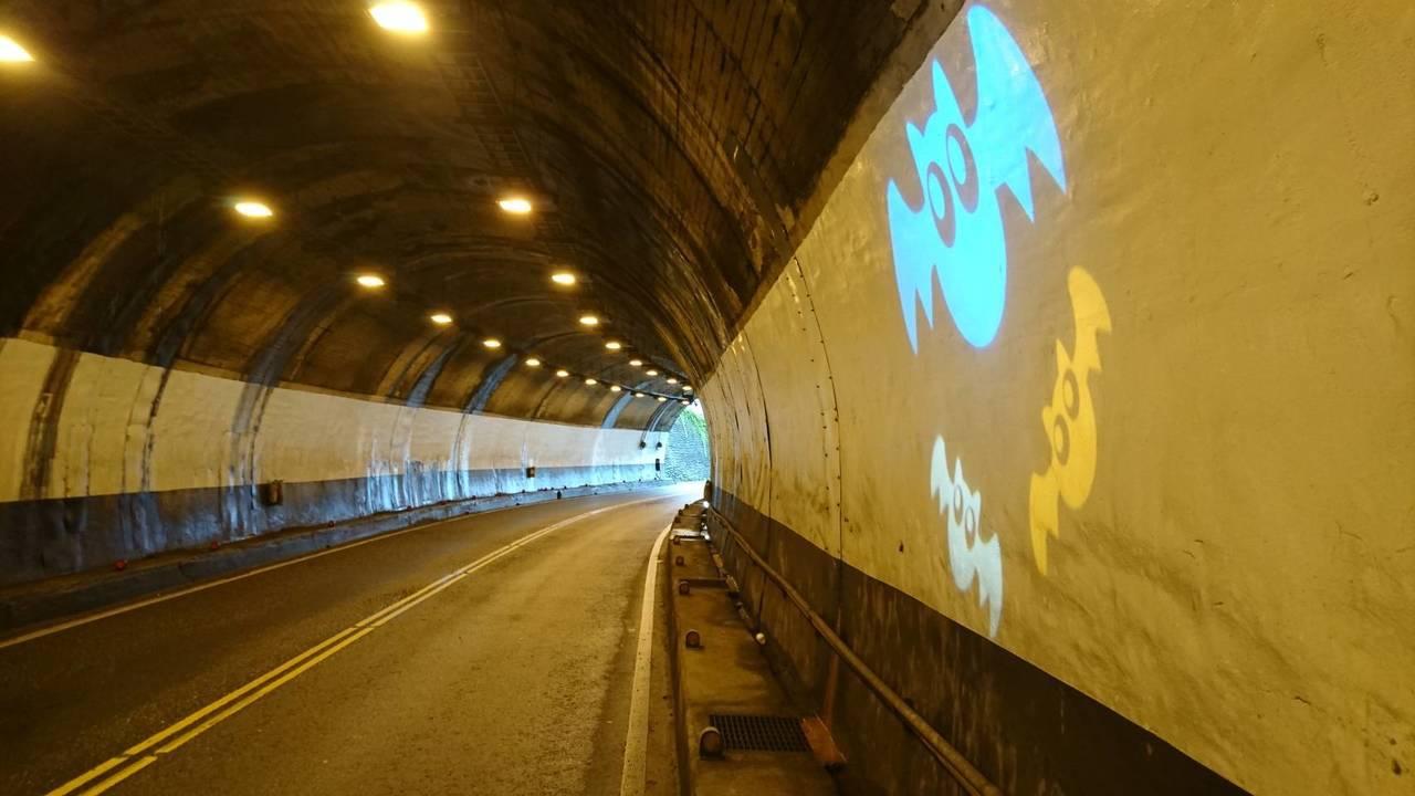台二線隧道中的蝙蝠光雕,提醒用路人這裡有蝙蝠棲地,要放慢車速。圖/公路總局第一區...