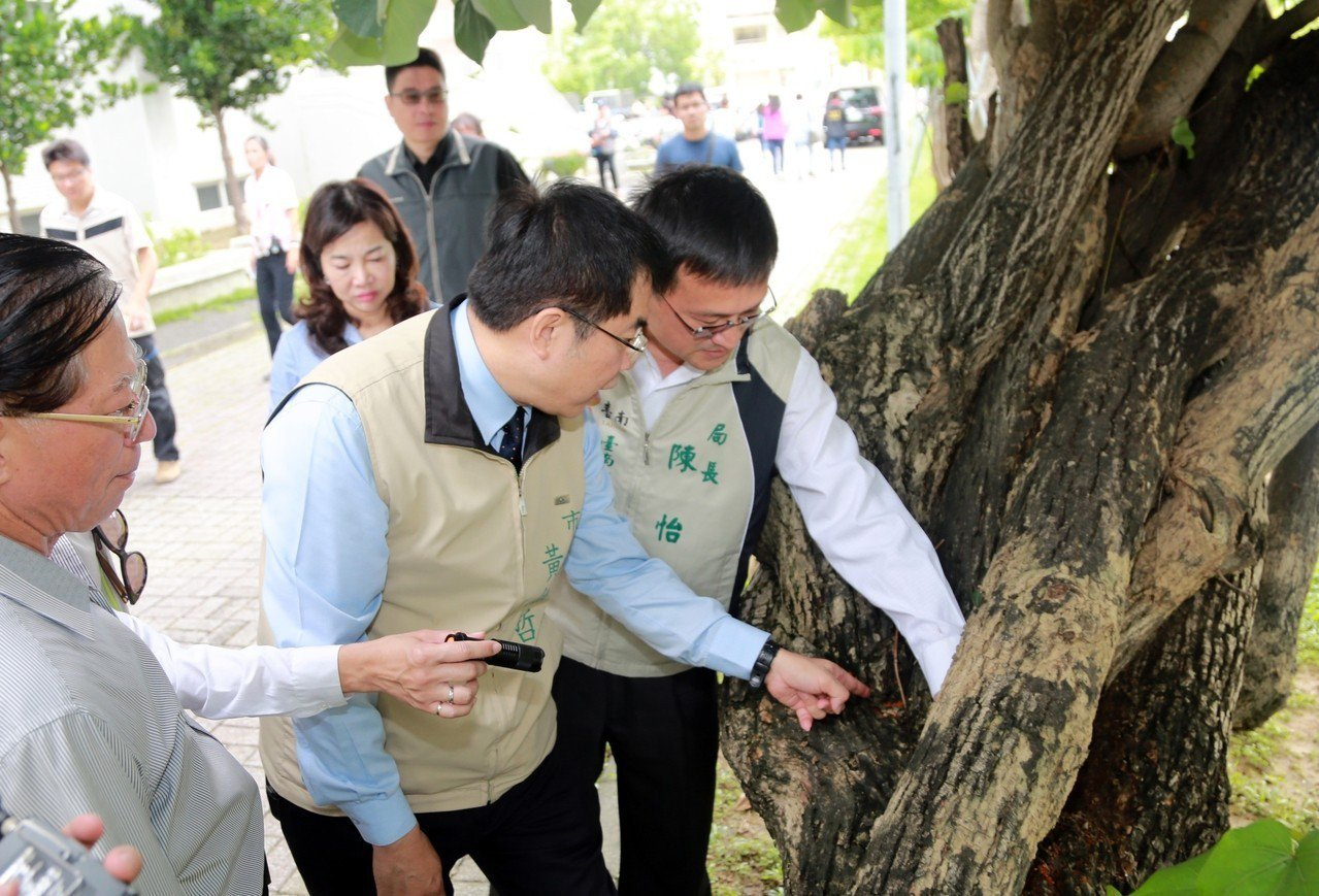 台南市長黃偉哲(右二)察看清理台南高工校園環境過程。圖/台南市政府提供