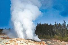 黃石噴泉異常活躍 近半年噴發創紀錄