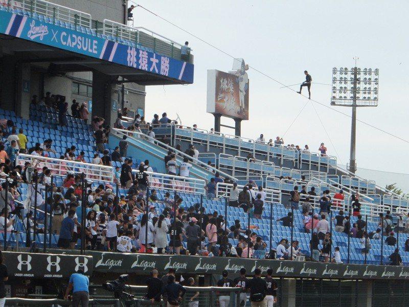 沙瓦塔的高空鋼索秀讓猿隊球員、球迷看得過癮。記者藍宗標/攝影