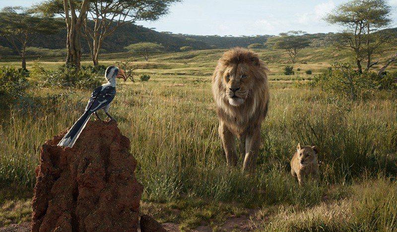 ▲極度逼真的動物及場景,為經典動畫帶來嶄新視角。 圖/迪士尼影業 提供