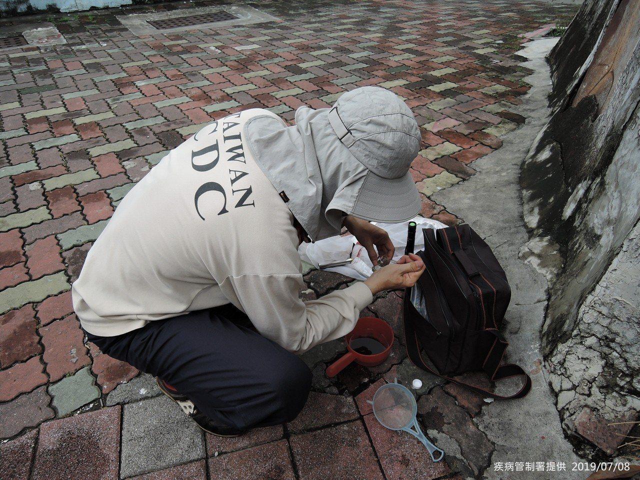 疾管署防疫人員於台南市中西區開山里執行孳生源查核。圖/疾管署提供