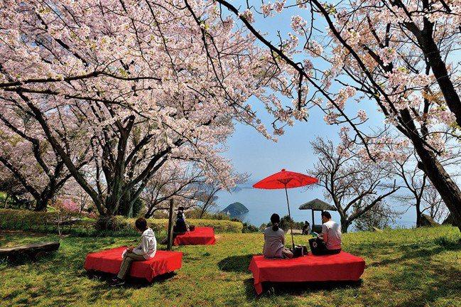 依據櫻花所在地之氣候或高度不同,2月~6月均為日本賞櫻的熱門季節。 資料提供/日...