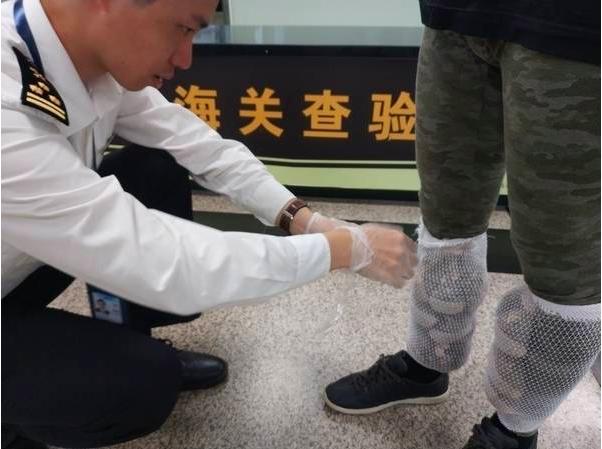 廈門海關查獲台籍旅客捆綁在小腿部的蜜袋鼯。(翻攝自法制網)
