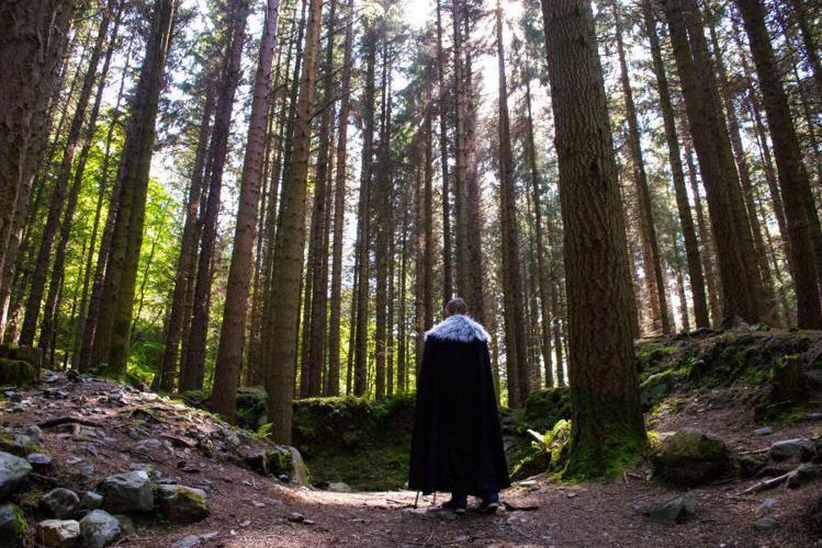托利莫爾國家森林公園是北愛爾蘭第一個國家森林公園,保存了豐富多元的自然生態。圖/...