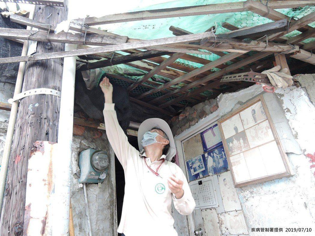 疾管署防疫人員持續於台南市中西區開山里加強孳生源查核。圖/疾管署提供