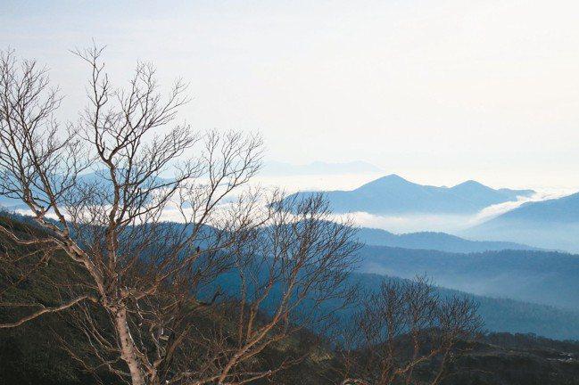 壯闊的雲海是北海道星野Tomamu一大賣點,唯有住客可以上山觀賞。 圖/陳志光、...