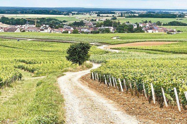 位於Dijon附近、聞名於世的帶狀葡萄酒產區,多少世紀以來,地貌幾乎沒有改變,自...