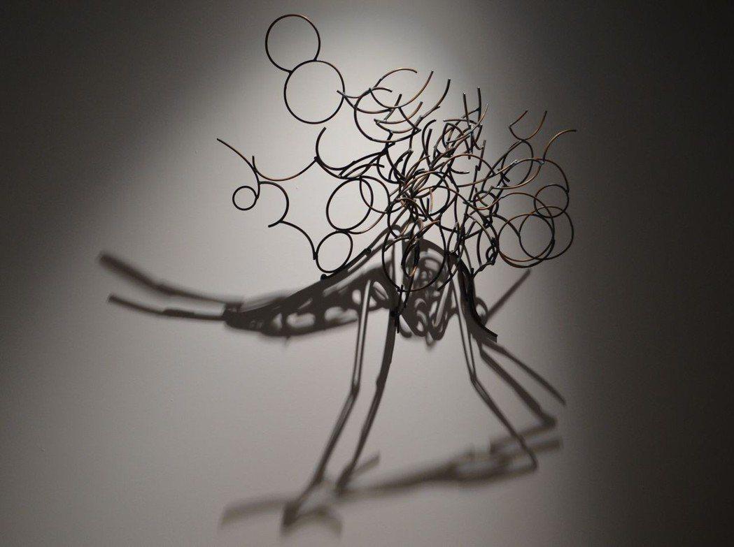 以鐵與光線,投射出蚊子的影像。  陳慧明 攝影