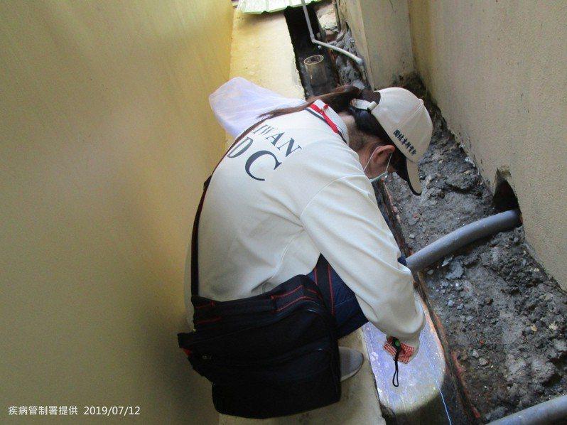 疾管署防疫人員於高雄市三民區安吉里執行孳生源查核。圖/疾管署提供