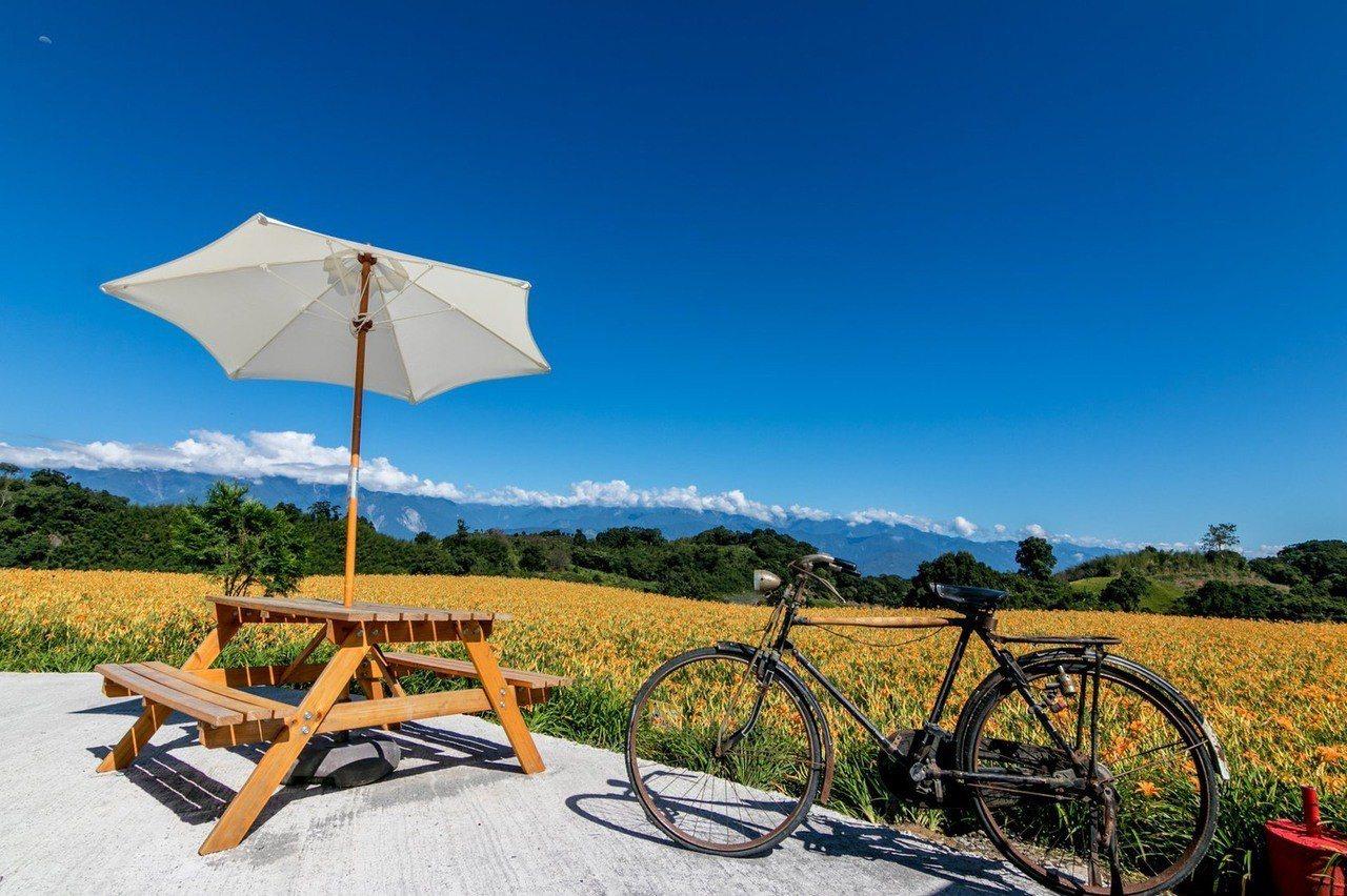 夏天到花東縱管騎單車,賞稻田,是美好的享受。圖/縱管處提供