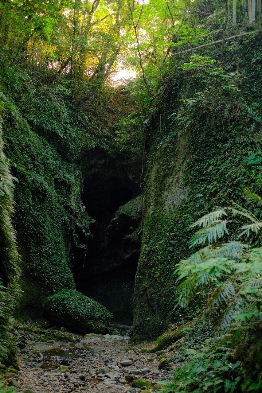 因造山運動而形成的「伊尾木洞」,被指定為國家天然紀念物。圖/高知縣政府提供