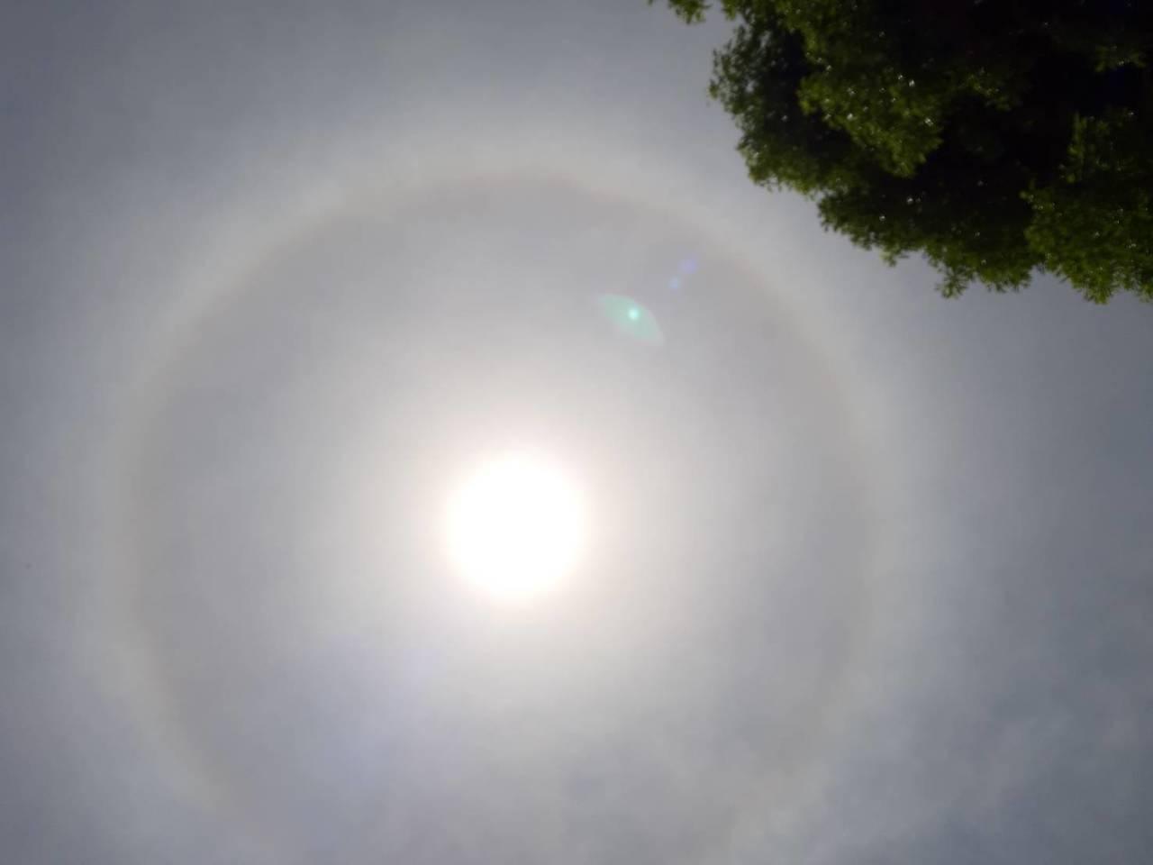 桃園市今天中午天空出現「日暈」景象,不少民眾抬頭發現,紛紛拍下照片或影片紀錄這難...
