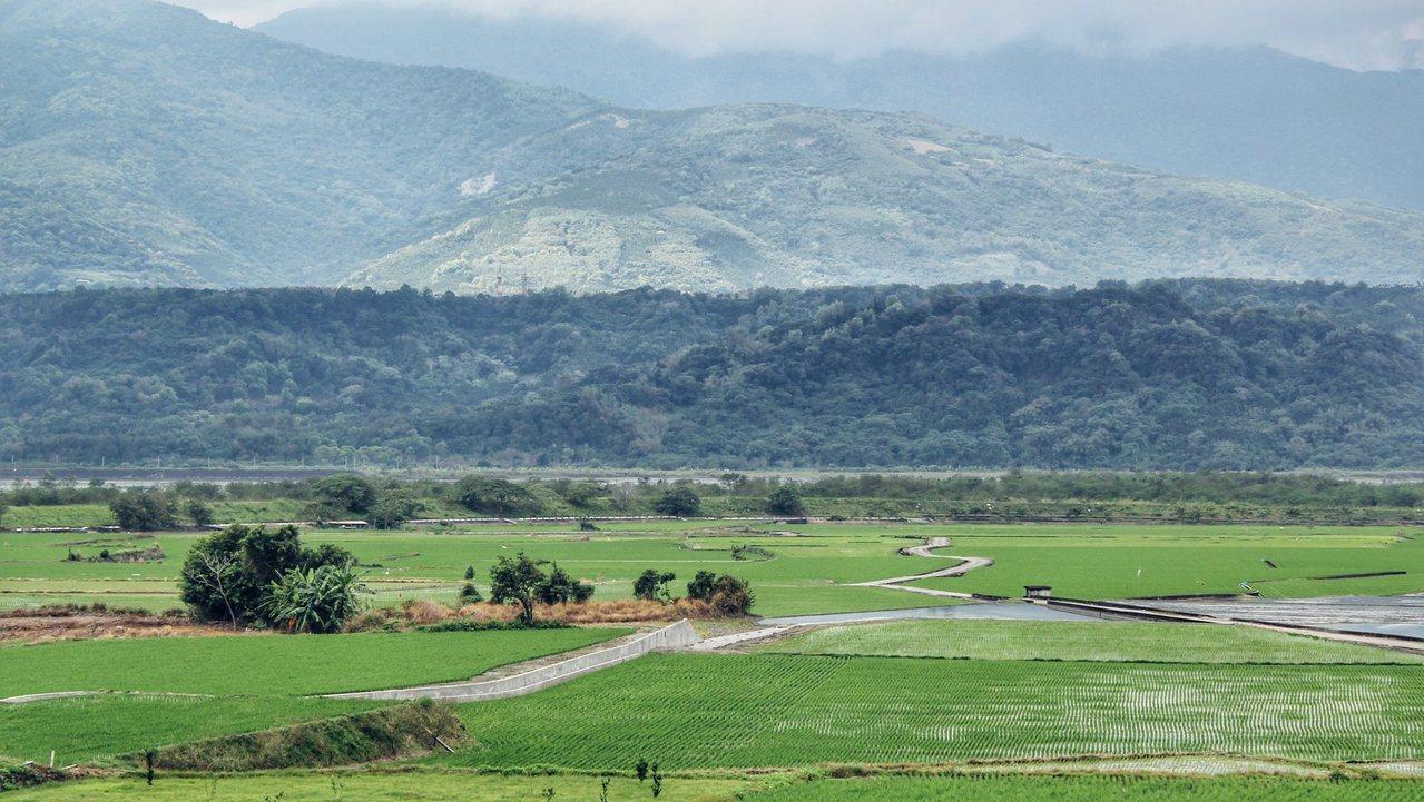 花蓮193縣道96.5公里處小徑蜿蜒,有玉里天堂路的美名,水保花蓮分局主辦的「2...