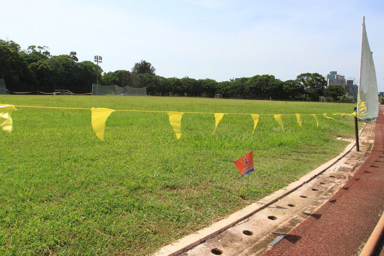 國立清華大學田徑場最近圍起封鎖線,草皮立有「紅火蟻防治區」告示。記者王駿杰/攝影