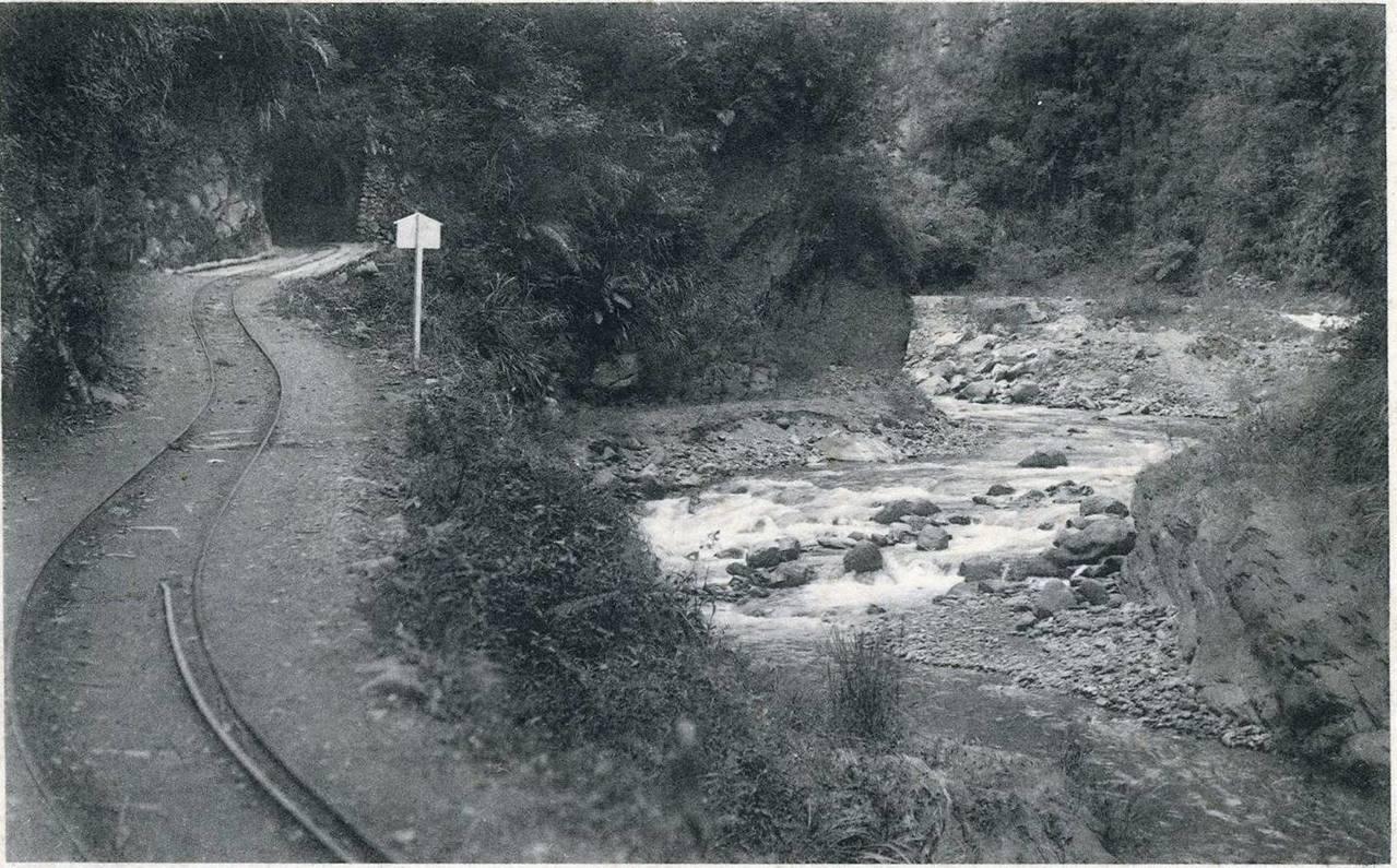 台鐵集集支線過去曾延伸至埔里鎮,肩負載客、運貨和發電等功能,後因天災毀損、公路漸...