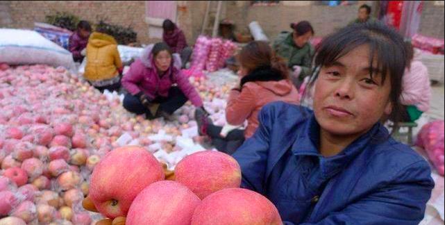 大陸水果價瘋漲,蘋果比去年貴1倍,也推高大陸消費者物價指數。(新浪財經照片)