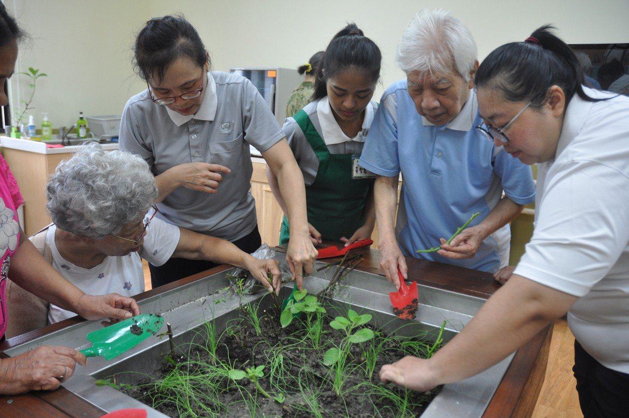 長期照護研究所學生帶動的園藝治療課程。圖/慈濟科大提供