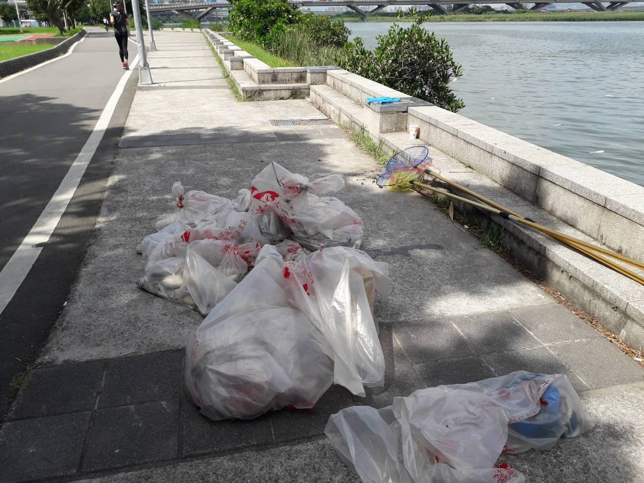 淡水河於中興橋下、北市大稻埕、新北的華江碼頭一帶13日中午被民眾發現有零星死魚浮...
