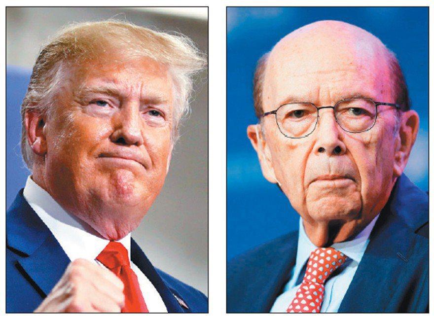 知情人士表示,美國總統川普(左)考慮撤換商務部長羅斯(右)。白宮官員預期時間最快在今年夏天。  (美聯社、路透)