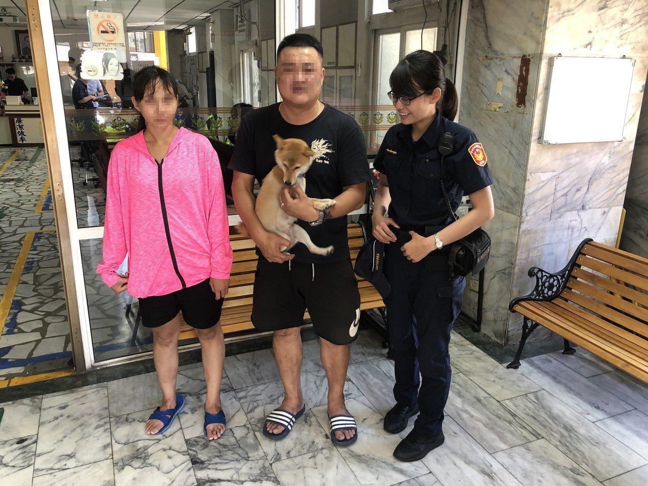高雄鳳山警分局五甲所接獲民眾抱著1隻柴犬到派出所報案;因柴犬脖子上掛著項圈,員警...