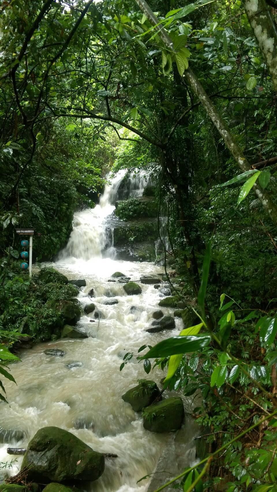 嘉義縣梅山鄉太興村的阿葉溪流域,經過連日大雨、水勢豐沛,吸引許多遊客慕名前來走步...