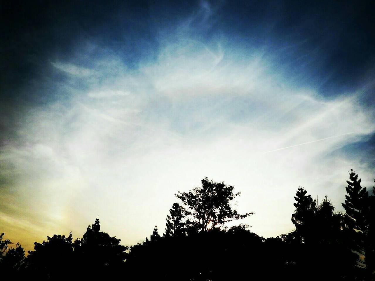 花蓮今晨出現美麗日暈景象。圖/氣象局前花蓮氣象站主任陳世嵐提供