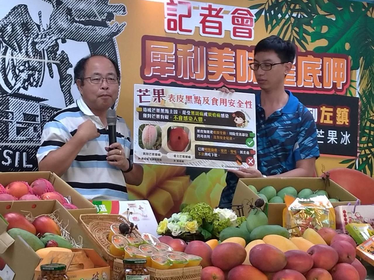 台南農改場副場長羅正宗澄清,有黑點的芒果並不會造成健康影響。記者陳俞安/攝影