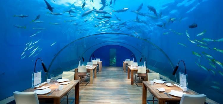 可以一邊用餐一邊欣賞身旁優游環繞的海中生物。圖/Ithaa Underwater...