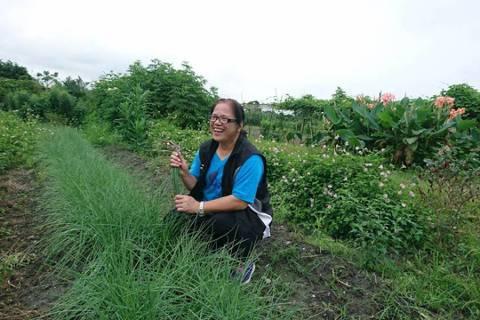 阿美族「野菜達人」吳雪月投入原民物種復育多年,與花蓮林管處合作保種和復育。 圖/...