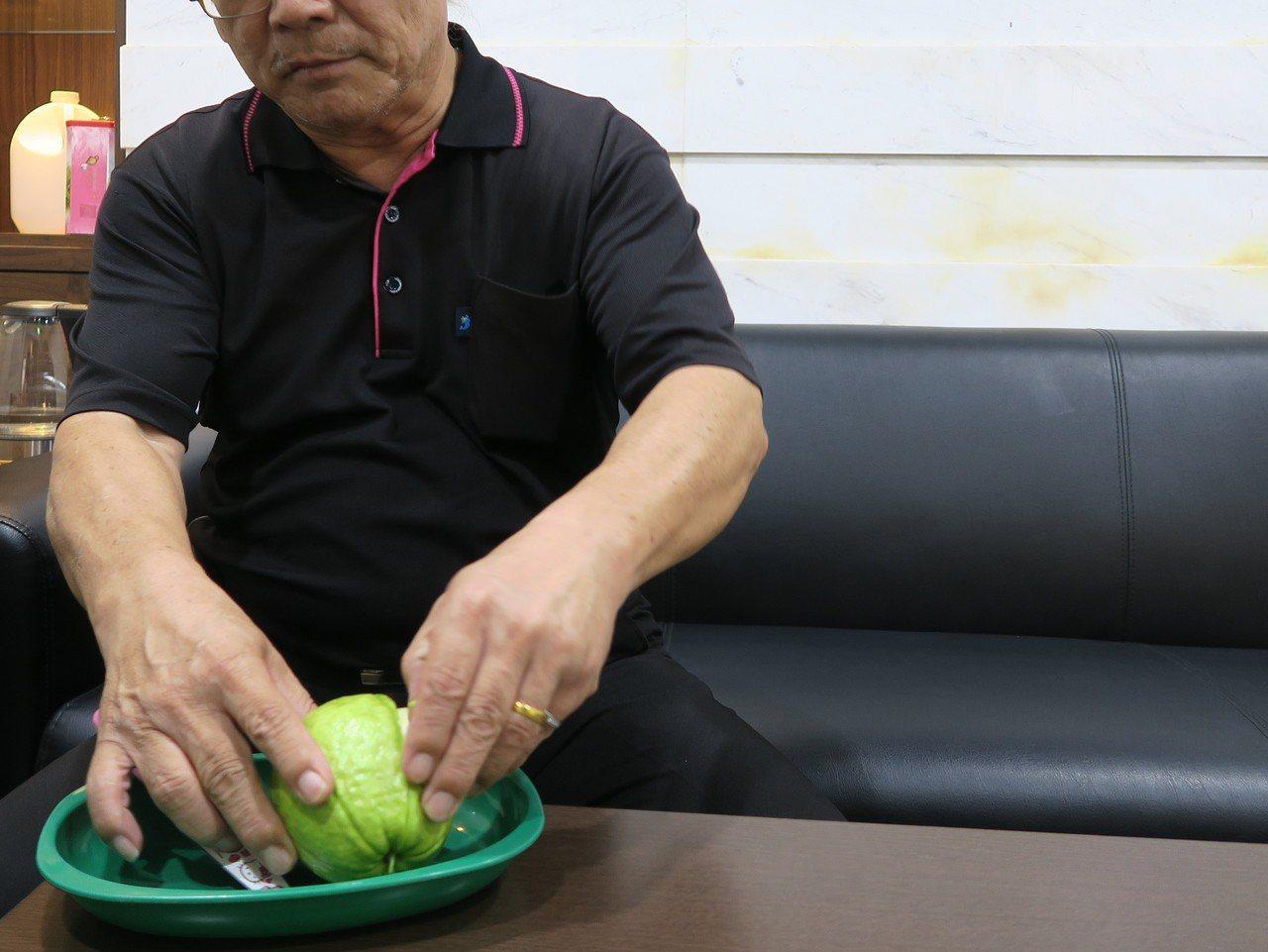 芭樂吃起來甜度雖不高,但糖尿病患者仍須適量食用。記者林敬家/攝影