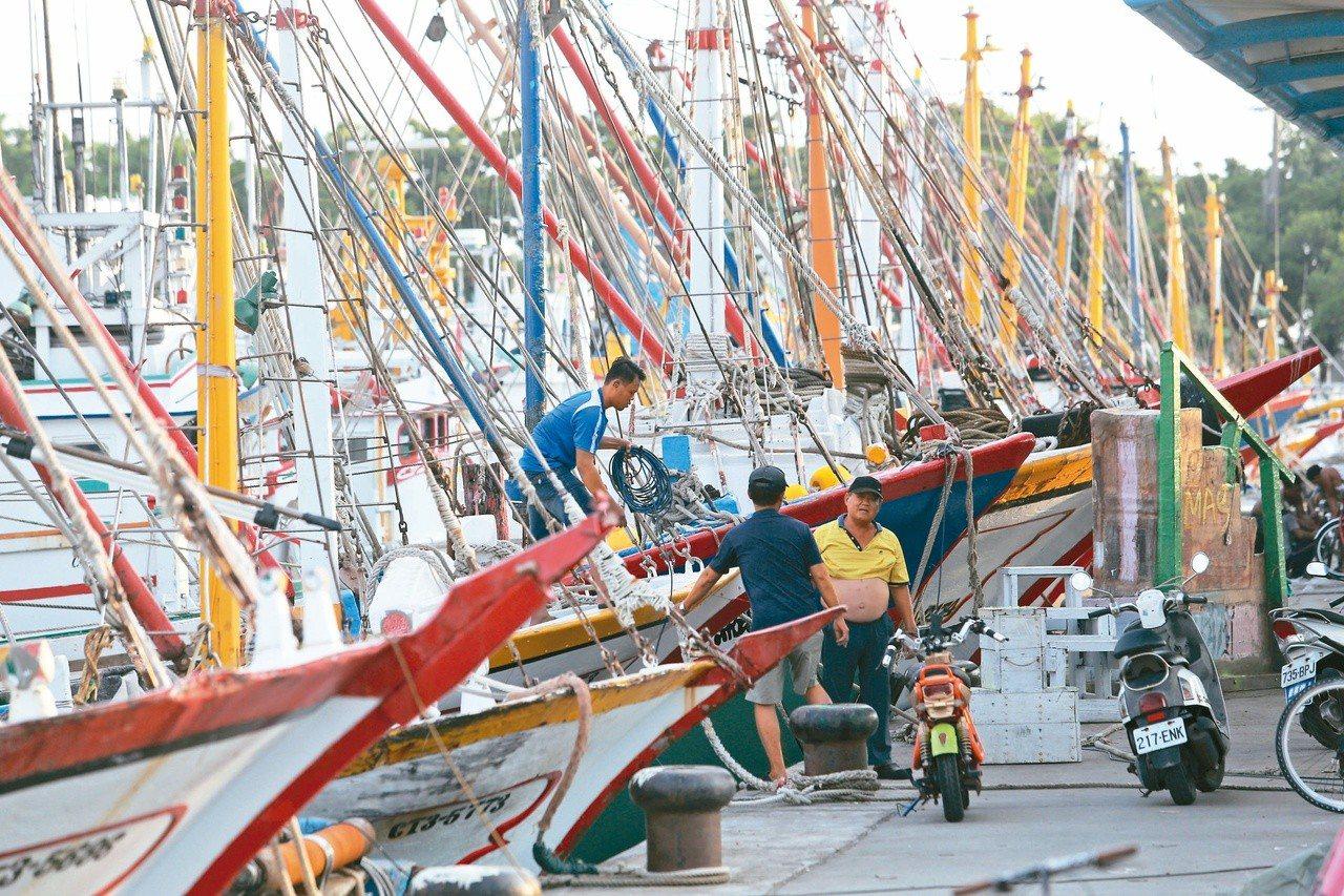 輕颱丹娜絲已不會侵襲台灣,但高雄蚵仔寮漁港昨仍擠滿進港避風的漁船。記者劉學聖/攝...