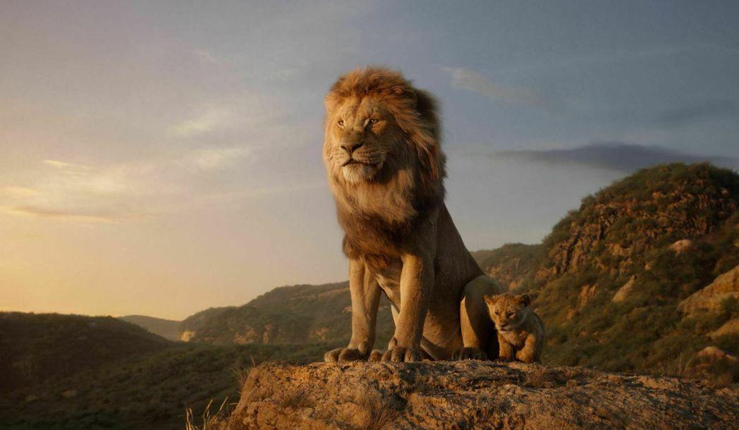 「獅子王」劇照。 圖/迪士尼提供