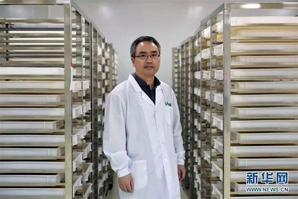 研究「以蚊治蚊」的奚志勇。圖/新華社